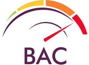 Bowkett Auto Consulting Logo